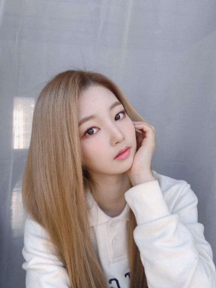 트위터 로켓펀치 멤버스 연희